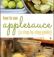 روش تهیه کمپوت سیب