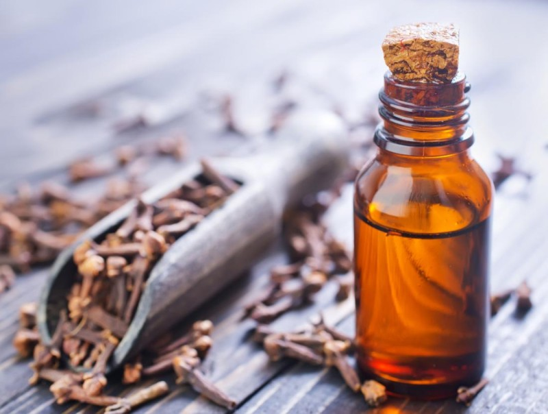 clove-oil-which-is-used-for-toothache-1