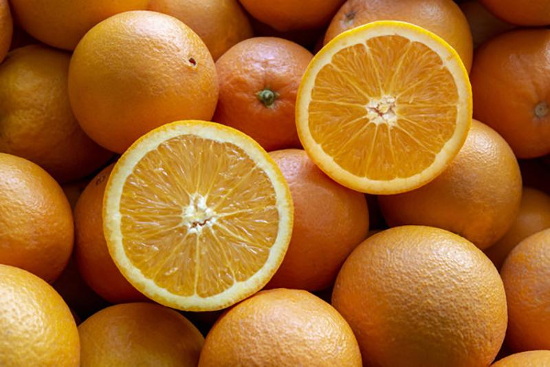 پرتقال در شیردهی